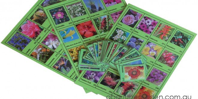 Flower Lotto Game About The Garden Magazine