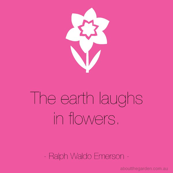 QUOTE The earth laughs in flowers ralph waldo emerson