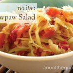 Recipe- Green pawpaw salad #recipe #salad #pawpaw #aboutthegarden