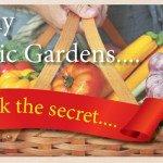SeaMax Fish & Kelp Searles Healthy Organic Gardens