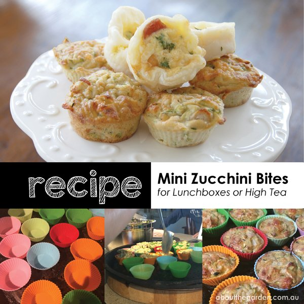 Step by step mini zucchini bites perfect for lunchboxes and high tea