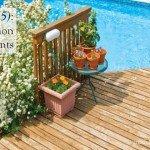 five common poolside plants #summer #aboutthegarden