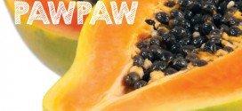 How to Grow Pawpaw