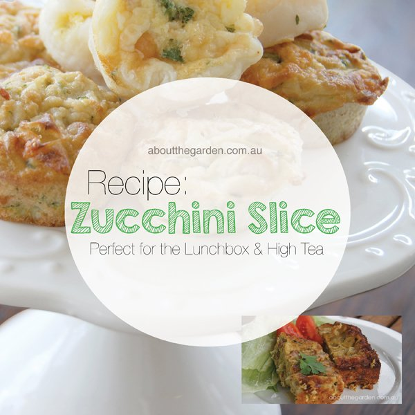 recipe savoury zucchini slice perfect for lunchbos and high tea