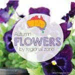 Autumn Flower Guide by regional zone Australian Gardening aboutthegardenmagazine