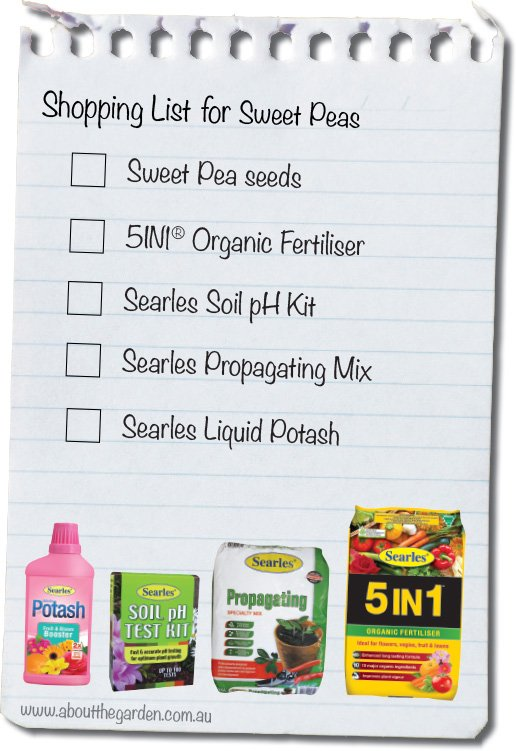 Shopping list growing saint Patricks day Sweet peas indd.indd