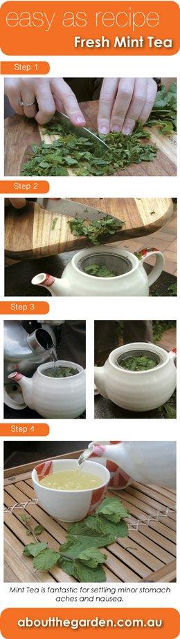 How to Make refreshing Mint Tea
