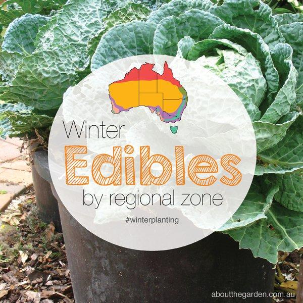 Winter Herbs Fruit Vegies (Vegetables) Planting Guide
