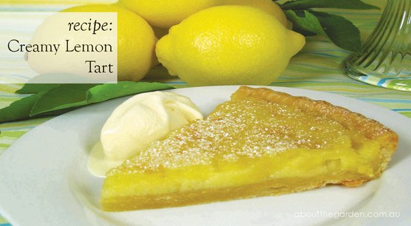 Delicious Lemon Tart with super easy base