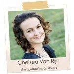 Chelsea Van Rijn #horticulturalist #gardenwriter #sustainabilityeducator #gardening #aboutthegarden.com