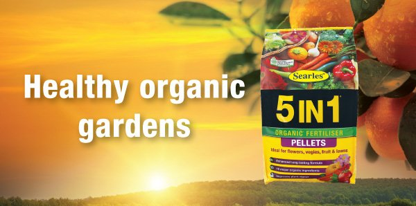Searles Healthy Organic Gardens Stockist 5 IN 1 Pellets.indd