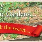 5IN1 Organic Plant Food Pellets Searles Healthy Organic Gardens