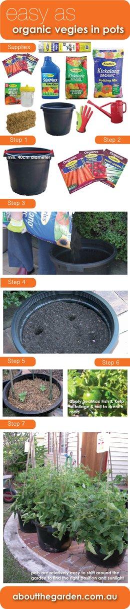 Easy as grow organic vegetables in pots