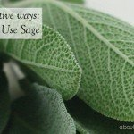 Three (3) Festive Ways to Use Sage #herb #decorating #christmas www.aboutthegarden.com.au