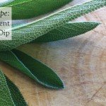 Recipe two ingredient sage dip #healthy #partyfood #garden #aboutthegarden