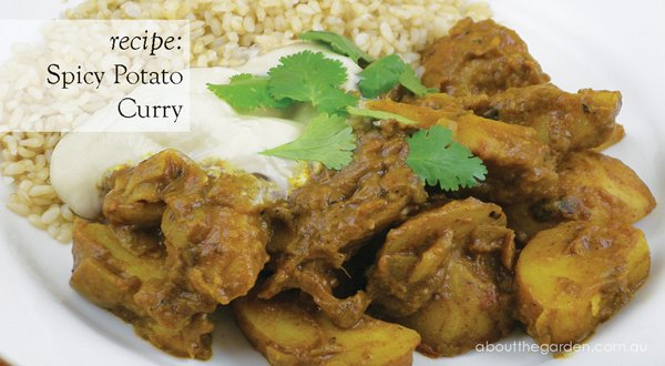 Potato Curry Recipe, Indian Potato Curry, Vegetarian Potato ...