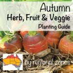 vegetable planting Australian Autumn Flower Planting Guide by regional zones #australia #garden #guide #seed #aboutthegarden.com.au