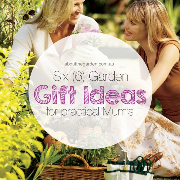 Six garden gift ideas for practical mums