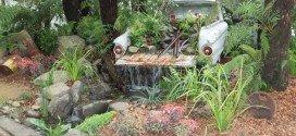 Queensland Garden Expo 2014