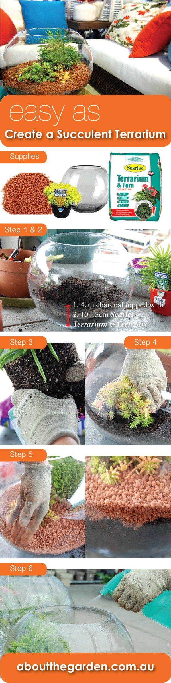 Easy As Create A Succulent Terrarium About The Garden Magazine