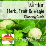 Gardening australia vegetable garden Winter Herb, Fruit & Vegie Planting Guide by regional zones australia aboutthegarden
