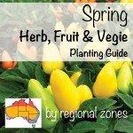 vegetable planting spring herb, fruit & vegie planting guide by temperate regional zone in australia