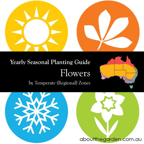 Seasonal Gardening Australia Flowers Garden by Temperate (Regional) Zone aboutthegarden.com.au