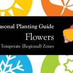 Seasonal Gardening Australia Flowers Garden by Temperate (Regional) Zone header aboutthegarden.com.au
