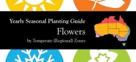 Seasonal Gardening Australia Flowers Garden by Temperate (Regional) Zone header aboutthegarden.com.au