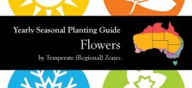 Seasonal Gardening Australia Flower Garden by Temperate (Regional) Zone