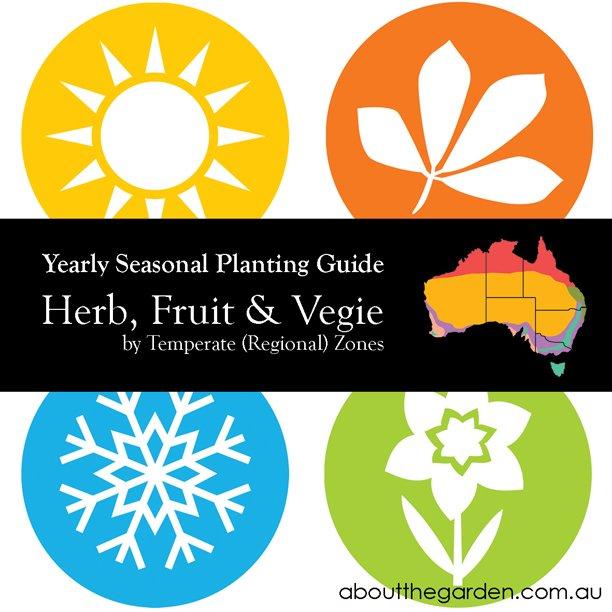 Yearly Seasonal Gardening Australia Vegetable Garden by Temperate