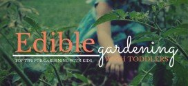 Edible gardening with toddlers – top tips for gardening with kids