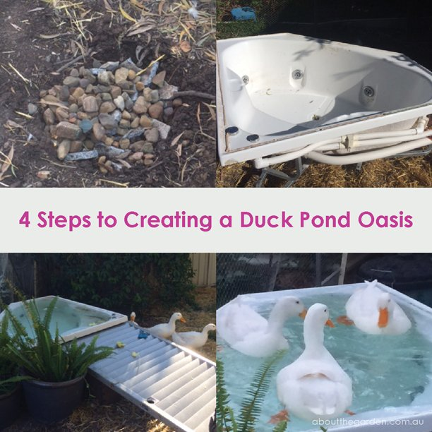 how to create a duck pond oasis using a recycled bath