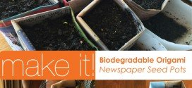 Learn to make Biodegradable Pots for Seedlings- Origami Newspaper Method DIY step-by-step instructional aboutthegarden