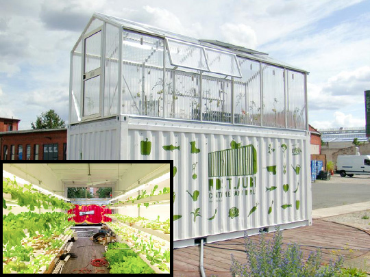 shipping container farm to grow vegetable plants