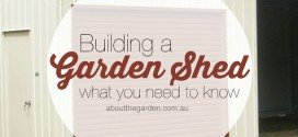 What You Need to Know before Building a Garden Shed