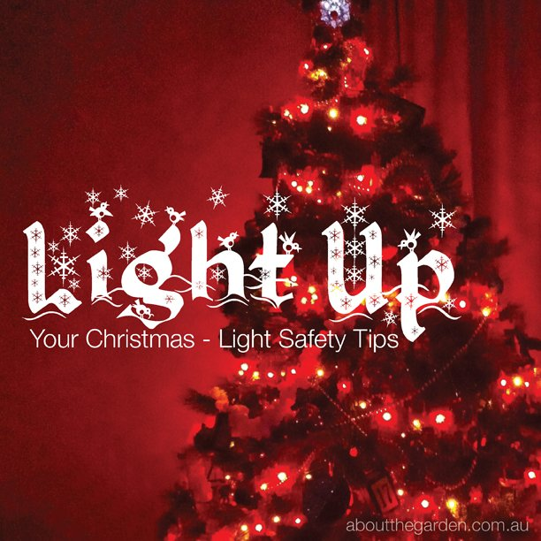 Light Up Your Christmas Light Safety Tips garden aboutthegarden