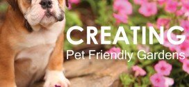 Creating pet friendly gardens