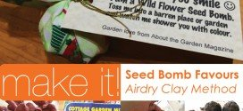 Make it! Cottage Garden Seed Bomb Favours | Airdry Clay Method