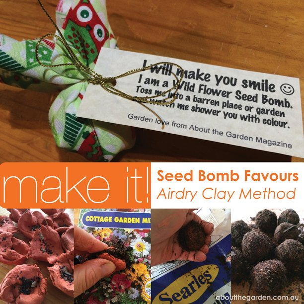 Cottage Garden Seed Bomb Favours - Clay Method DIY step-by-step instructional aboutthegarden