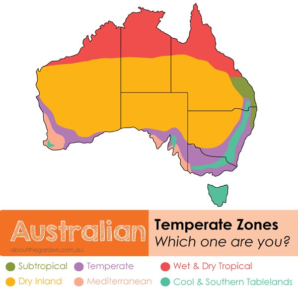 Gardening Australia flowers and vegetable plant guide by temperate zones