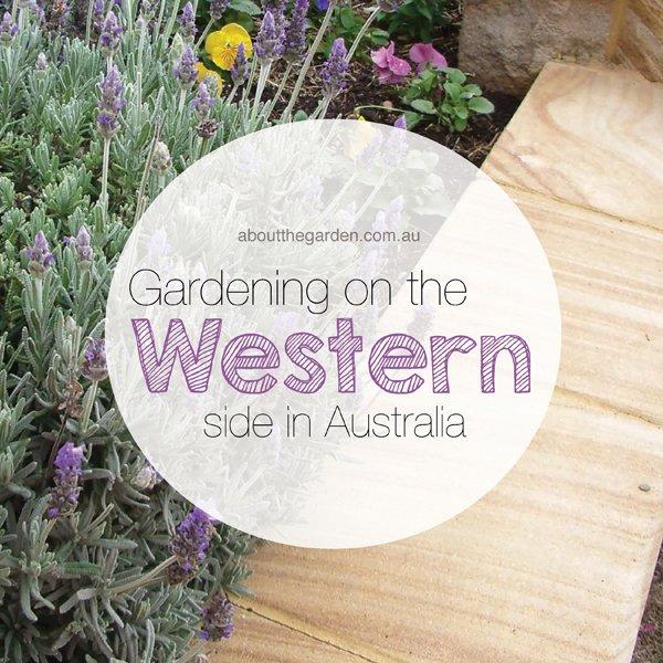 Gardening on the Western Side in Australia