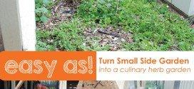 Small Side Garden Idea - Creating a Herb Garden