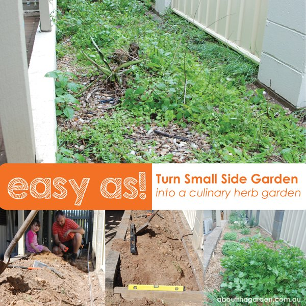 Small side garden idea creating a herb garden about the for Creating a small garden