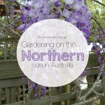 Gardening on the northern side in Australia