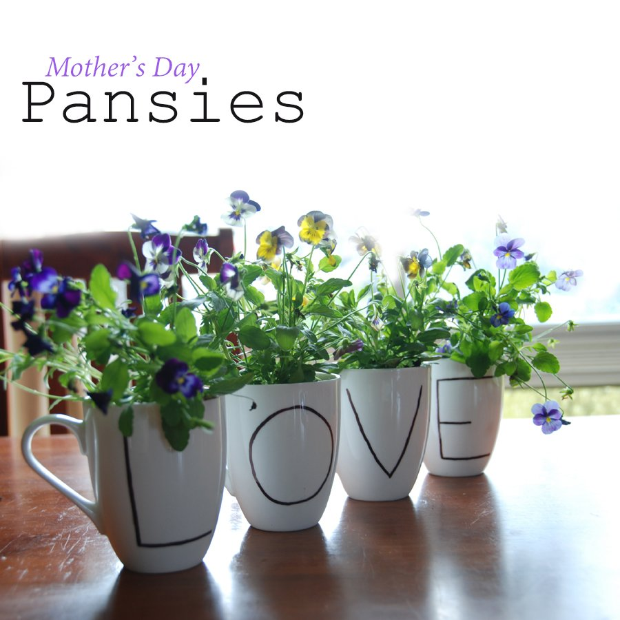 Mothers-Day-pansies-in-a-mug-be-a-fun-mum-garden.