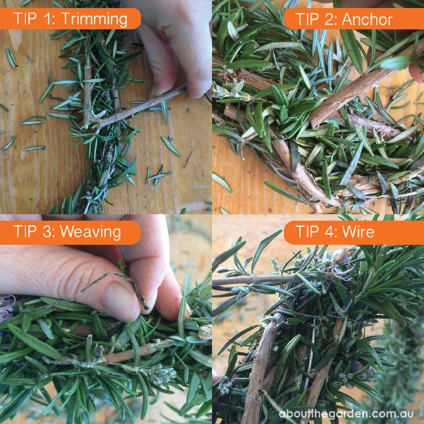 Rosemary wreath for Anzac Day tips when constructing