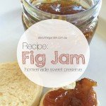 preserve recipe carolyn's homemade fig jam