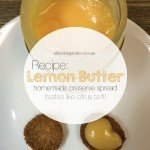 recipe lemon butter homemade preserve spread tastes like citrus tart