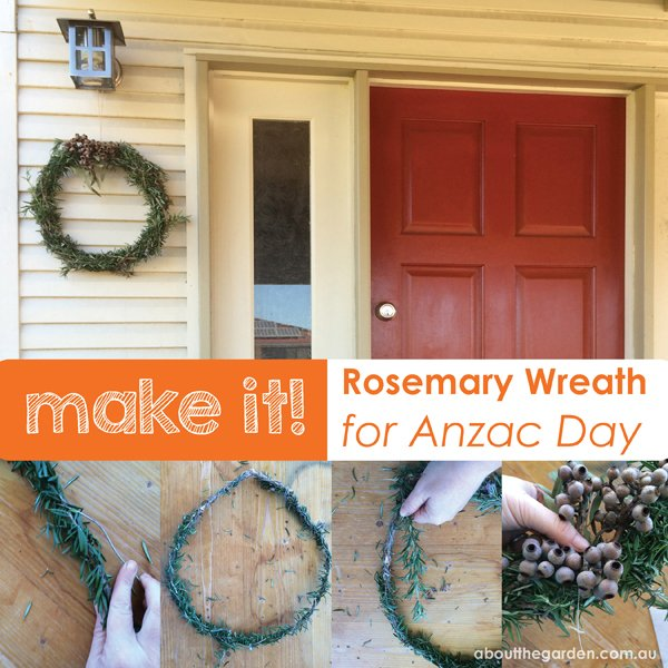 rosemary wreath for Anzac day frangrant remembrance garden aboutthegarden